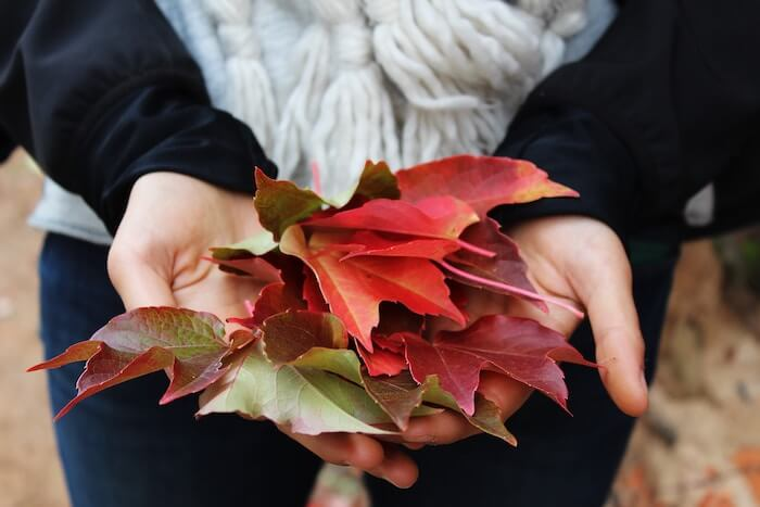 15 Awesome Fall Leaf Activities and Crafts Your Kids Will Love