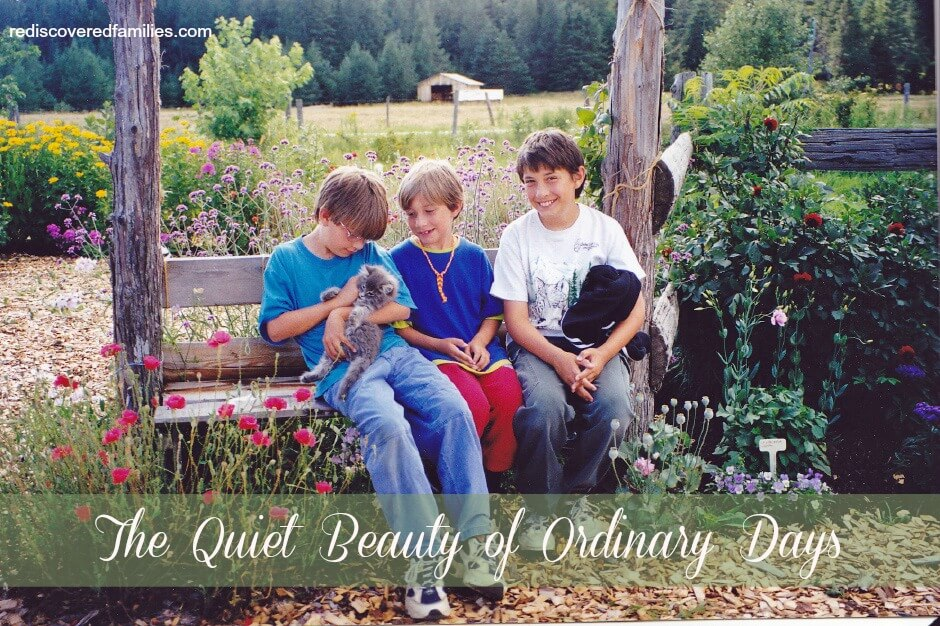 The Quiet Beauty of Ordinary Days