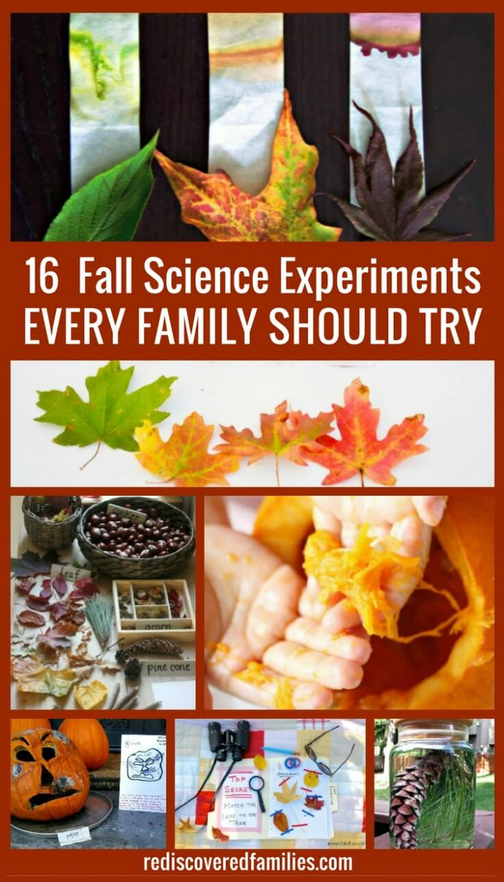 16 Fall Science Experiments Every Family Should Try